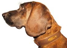 obojek NIGGELOH - Collar Individua, kůže-neopren, hnědý